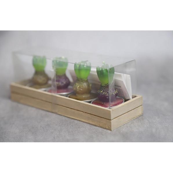 Набор свечей гиацинт в деревянном ящике