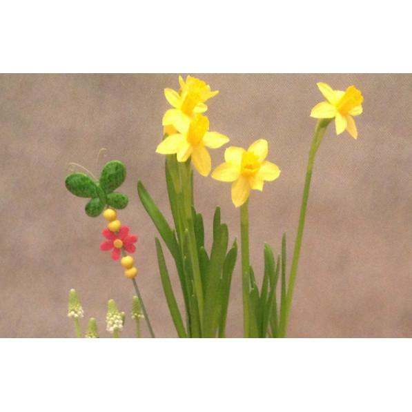 """Композиция из горшечных растений """"Весна"""""""